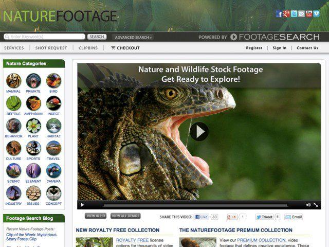 nature-footage