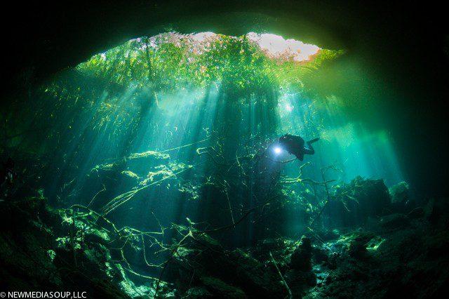 GardenOfEden_Cenote-1
