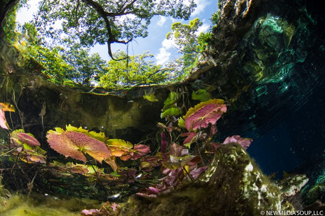 Grand_Cenote-1