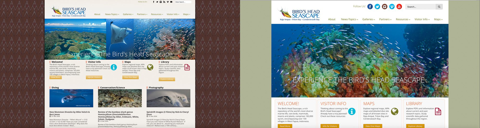 Newmediasoup-Birds-Head-Seascape-Home-Page-Before-After