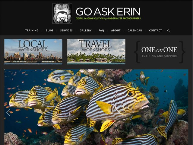 Newmediasoup-Go-Ask-Erin-website-home-page2-4x3