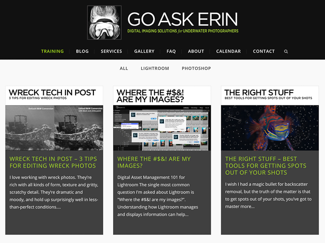 Newmediasoup-Go-Ask-Erin-website-tutorials-page1-4x3