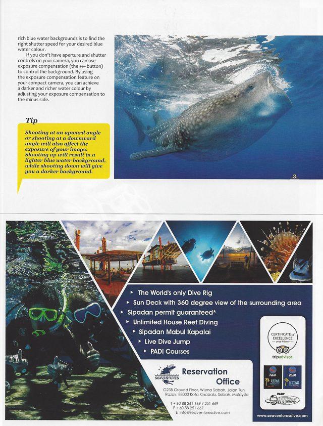 Newmediasoup-Scuba-Diver-Ocean-Planet-article-website-3