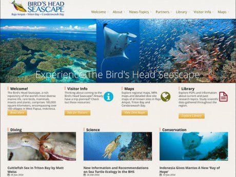 Newmediasoup_BirdsHeadSeascape