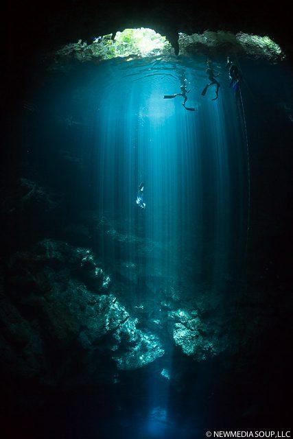 Newmediasoup_JenniferPenner_Cenotes2014-12