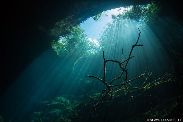 Newmediasoup_JenniferPenner_Cenotes2014-7