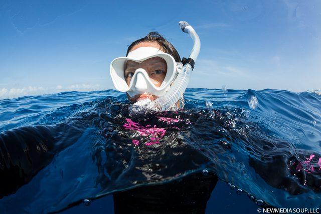 Newmediasoup_JenniferPenner_WhaleSharks2014-13