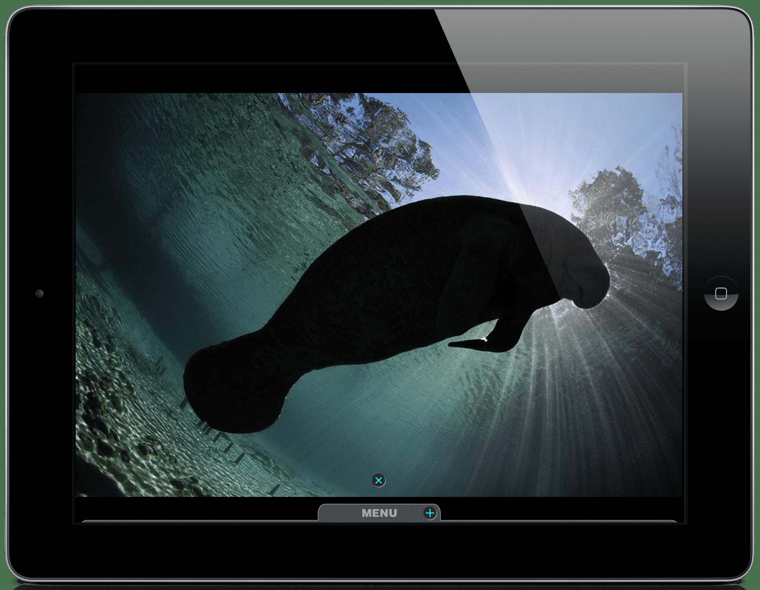 iPad_silhouettes5